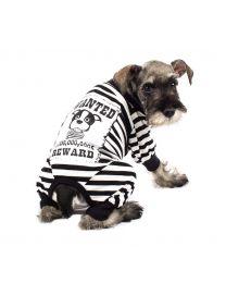 Disfraz Prisionero para Perros