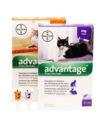 Advantage Pipeta Antipulgas para Gatos