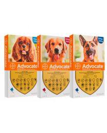 Pipeta Advocate para Perros