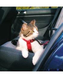 Arnés de Automóvil para Gatos
