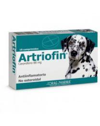 Artriofin (10 comprimidos) Drag Pharma