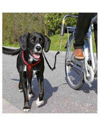 Set de Bicicleta para Perros