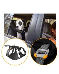 Arnés y Cinturón de Seguridad