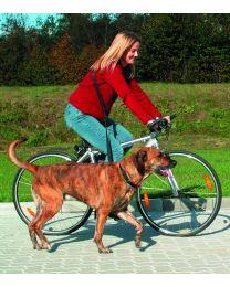 Correa de Bicicleta y Footing para Perros