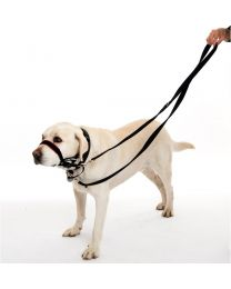 Correa de Entrenamiento HALTI para Perros