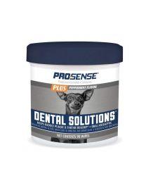 Plus Dental Solution 90 Toallitas