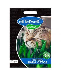 Hierba para Gatos Anasac