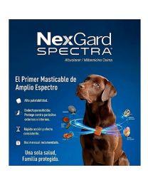 NexGard Spectra Antiparasitario - 1 tableta
