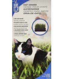 Pasto para Gatos