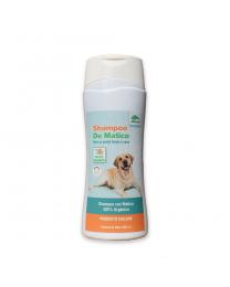 Shampoo de Matico Orgánico - 300 ml