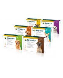 Simparica Antiparasitario para Perros (1 Comprimido)